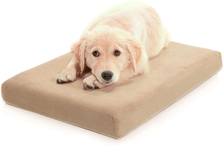 Labrador Retriever crate mat, pad