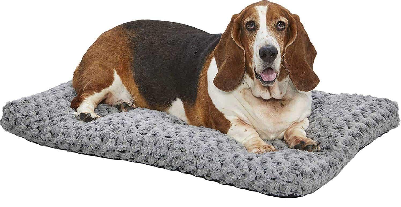 Best Labrador retriever beds, mats and pads