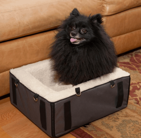 dog convertible seat and bed