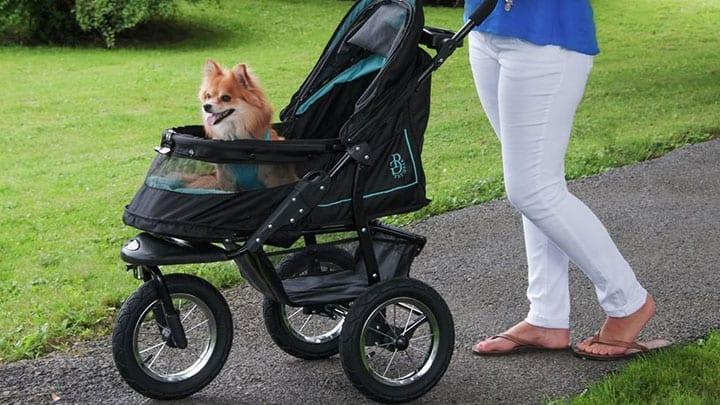 best Dog strollers
