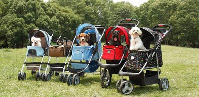 Best Dogs Strollers 2020