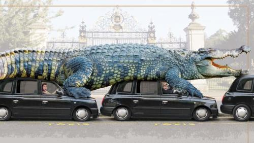 introducing biggest crocodile
